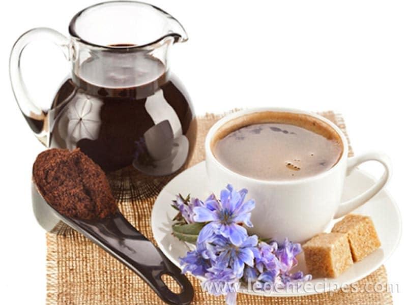 Chicory: advantage and harm, useful properties